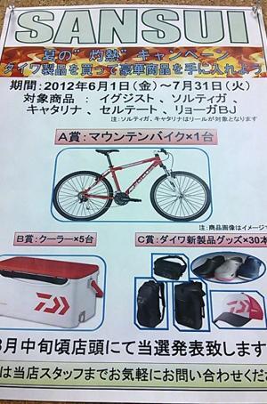 DSC_0038_convert_20120601142017.jpg