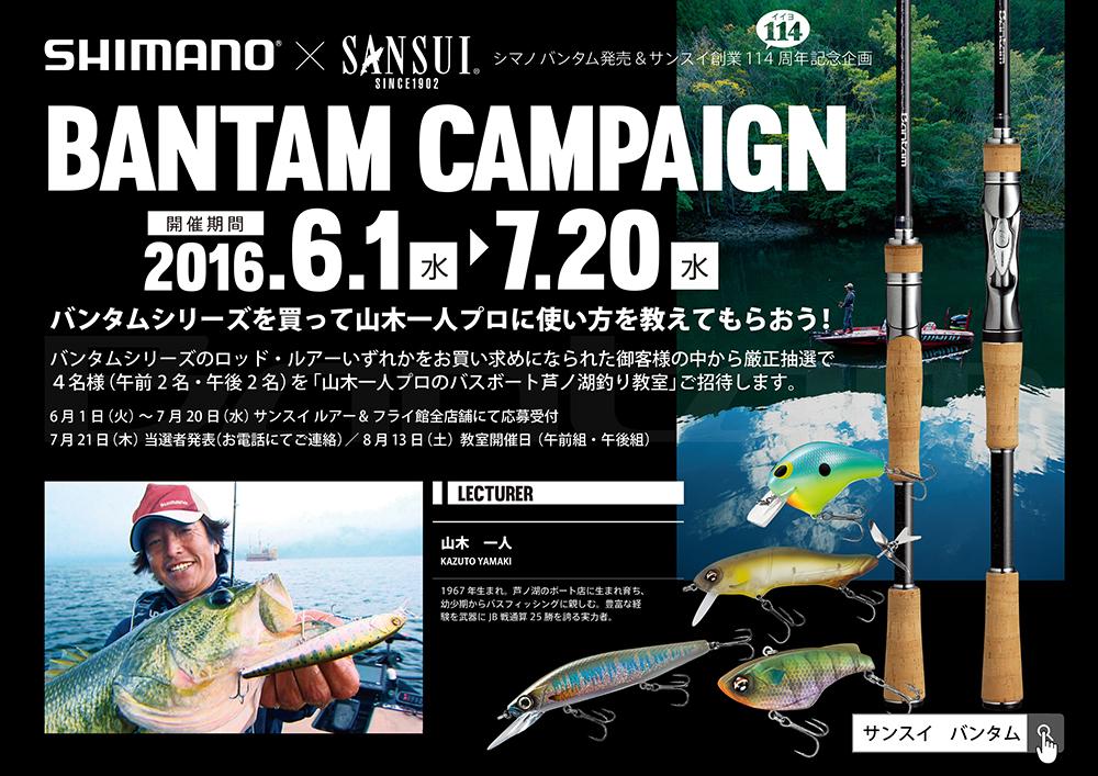 bantam_campaign_poster.jpg