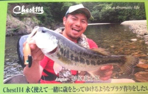 nanairo.jpg