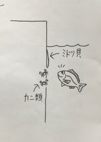 karasu3