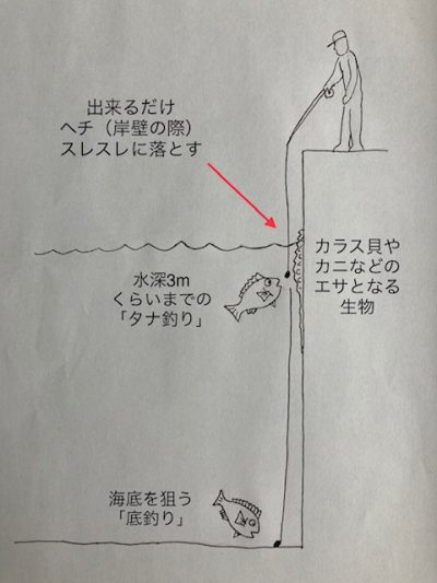 ヘチ釣り解説図